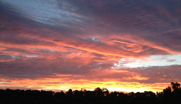 A picture of the sun rising over Diamond Creek in Victoria Australia