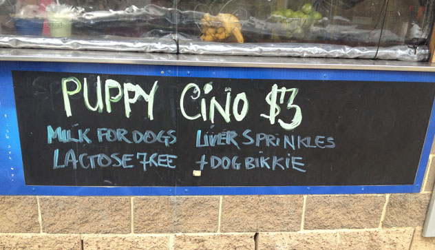 Picture of a sign for a puppy cino in Port melbourne