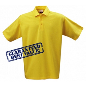 image of a promotional polo shirt