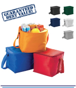 6 Can Cooler Bags