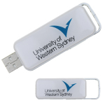 Promotional USBs