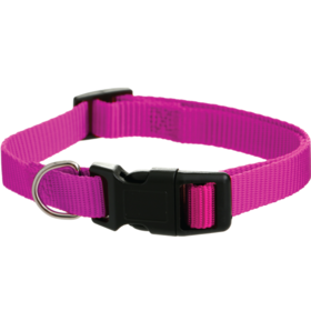 Dog Collars - 20mm