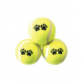 Dog Fetch Tennis Balls