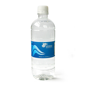 Express 600mL Spring Water