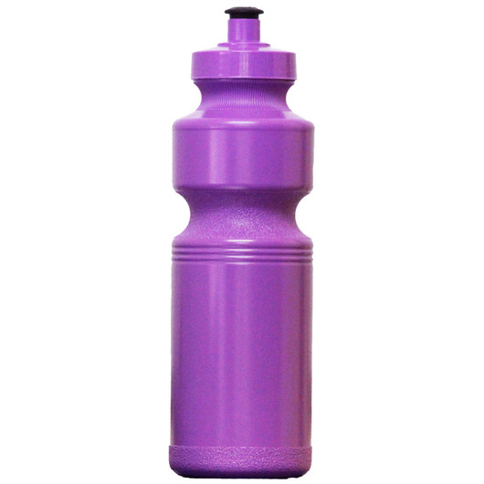 Budget Bottles Purple
